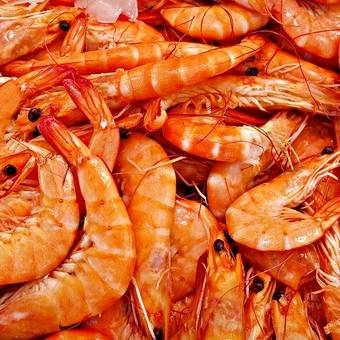 4-fornecedor-mariscos-camarao-da-costa